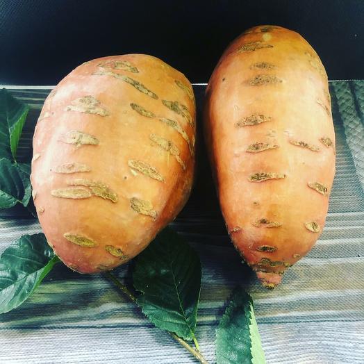 Картофель сладкий Батат 500 гр