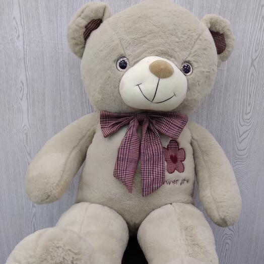 Медведь румянец