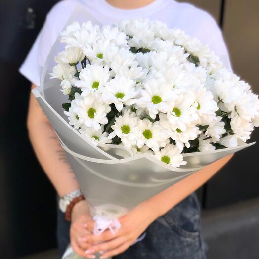 Ромашки хризантемы