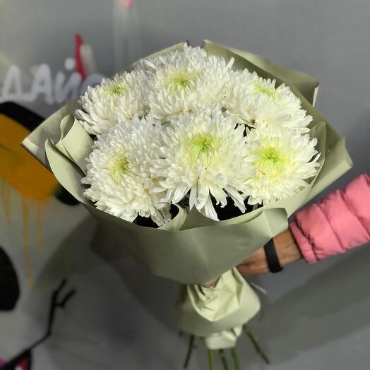 7 белых одноголовых хризантем 0162