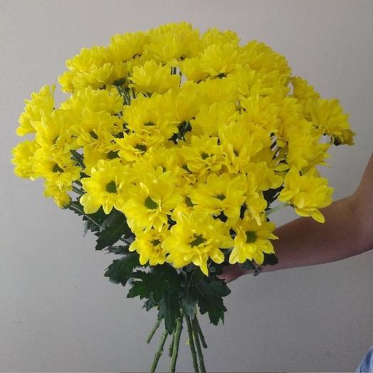 Букет из 9 желтых хризантем: букеты цветов на заказ Flowwow