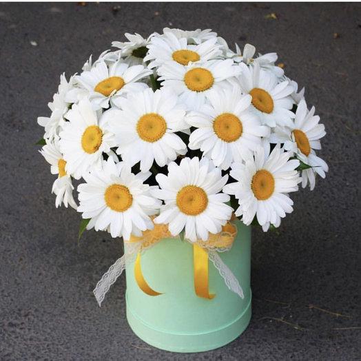 Ромашки в цилиндре : букеты цветов на заказ Flowwow