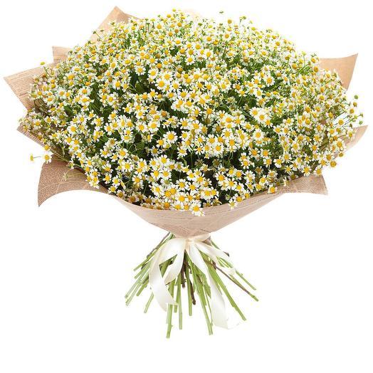 Пышный букет из 51 ромашки: букеты цветов на заказ Flowwow