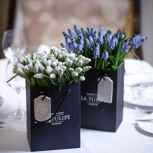 Мускари Голубые /  50шт. / в фирменном пакете La Tulipe: букеты цветов на заказ Flowwow