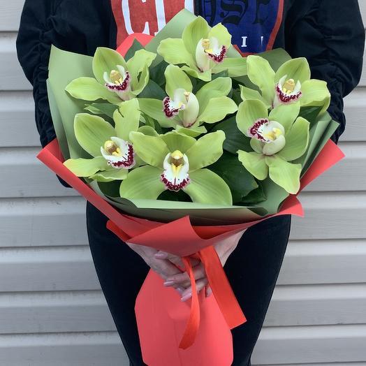 Зелёная орхидея