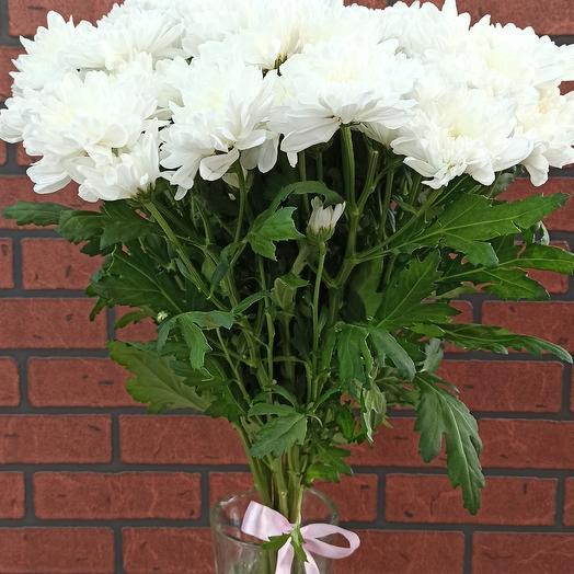 Хризантема Белая Балтика: букеты цветов на заказ Flowwow