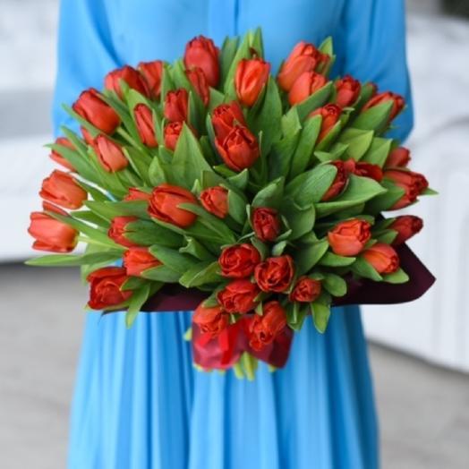 51 red tulip