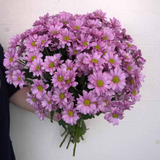 Букет Кустовых Хризантем