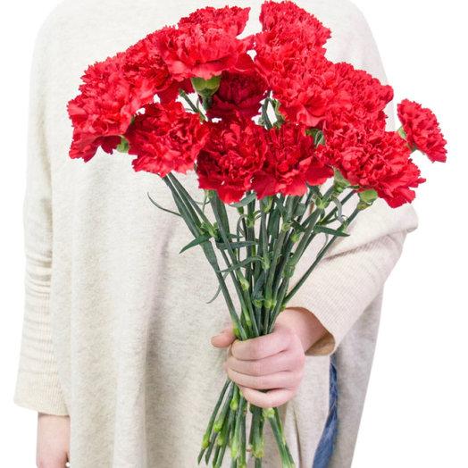 Букет из 15 красных гвоздик: букеты цветов на заказ Flowwow