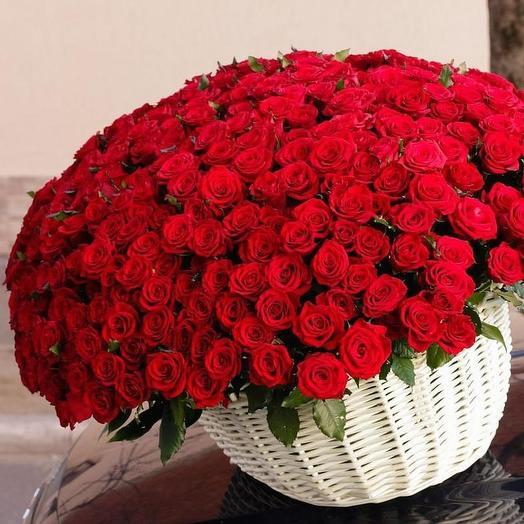 Орлия: букеты цветов на заказ Flowwow
