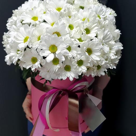 Хризантемы в коробке «Katharina