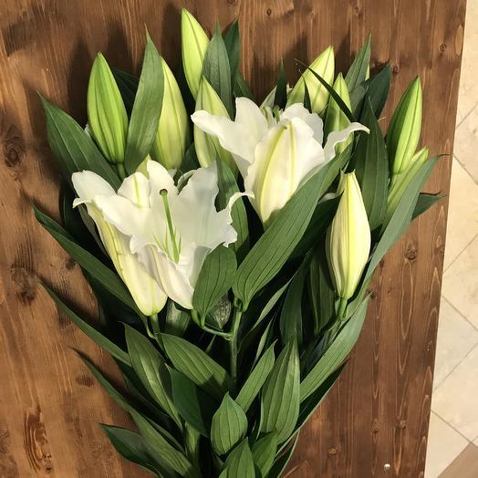 Ли-ли: букеты цветов на заказ Flowwow