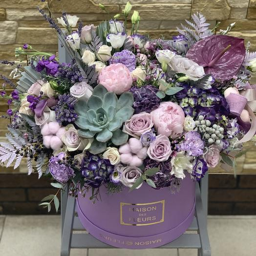 Премиум коробка с суккулентом: букеты цветов на заказ Flowwow