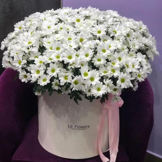 СУПЕР МЕГА объемная коробка с ромашками: букеты цветов на заказ Flowwow