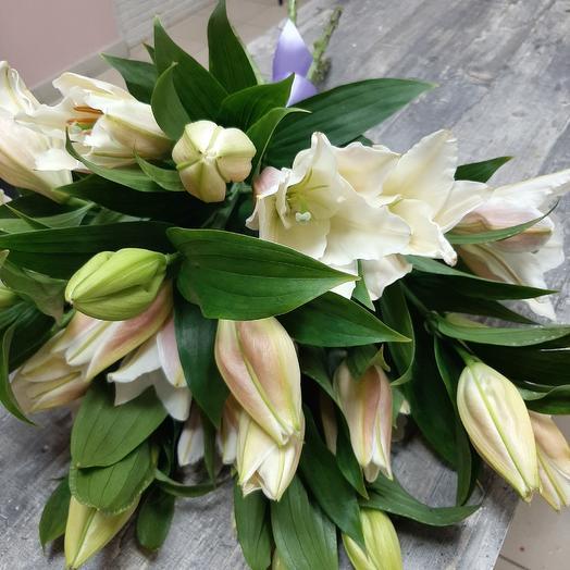 Mononoke of lilies