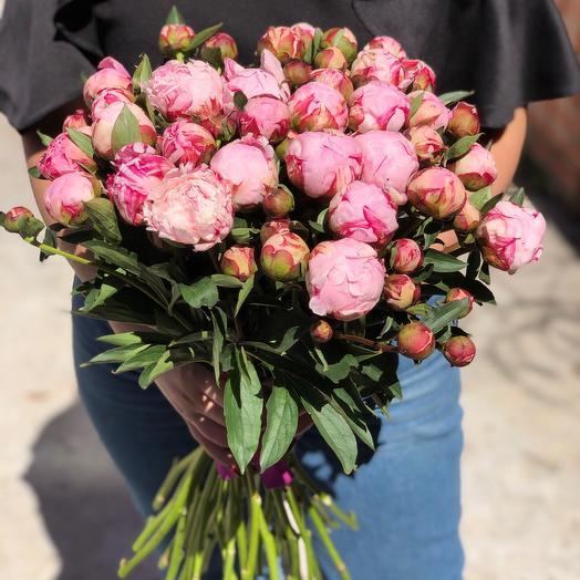 35 розовых пионов премиум