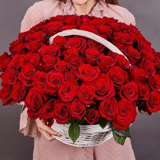 151 красная роза премиум эквадор