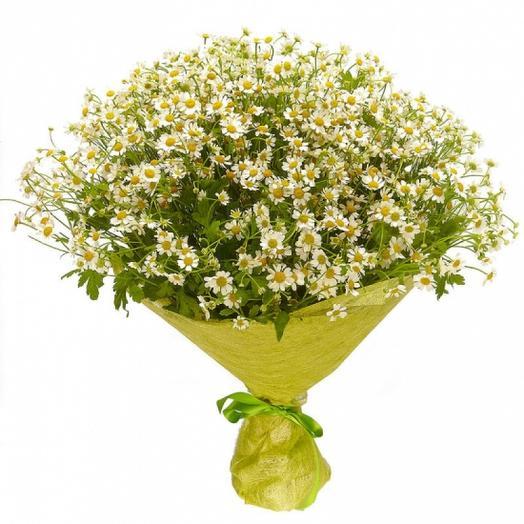Букет из 25 ромашек: букеты цветов на заказ Flowwow
