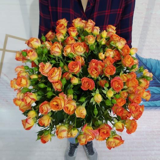 Оранжевое чудо-19