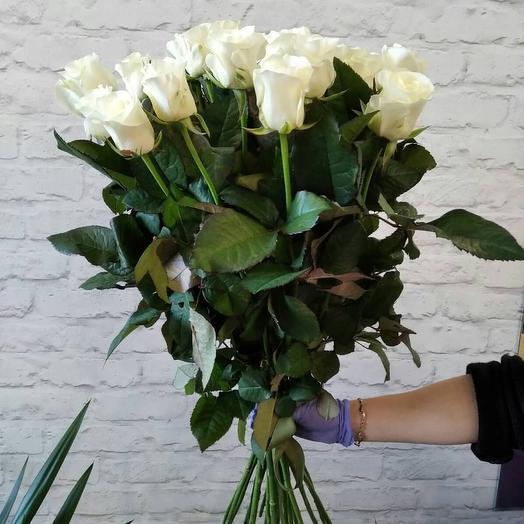 21 Біла троянда