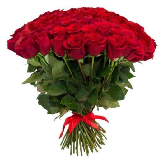 15 роз Экспловер 60-70 см