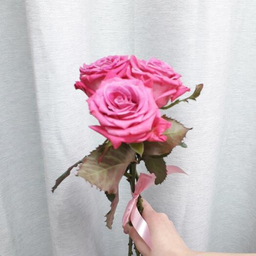3 розовых розы