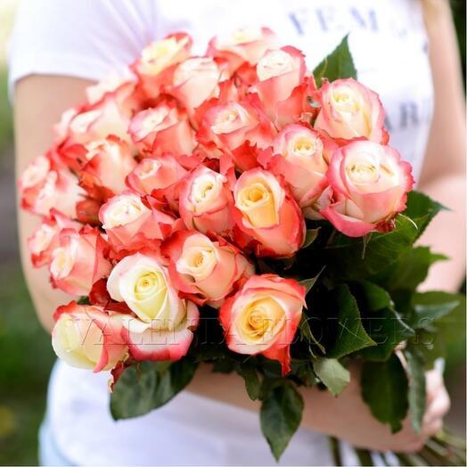 25 крупных роза сорта  кабаре