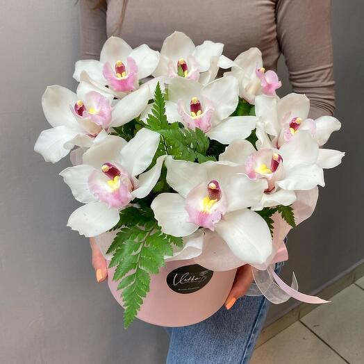 Орхидеи с зеленью 9 шт