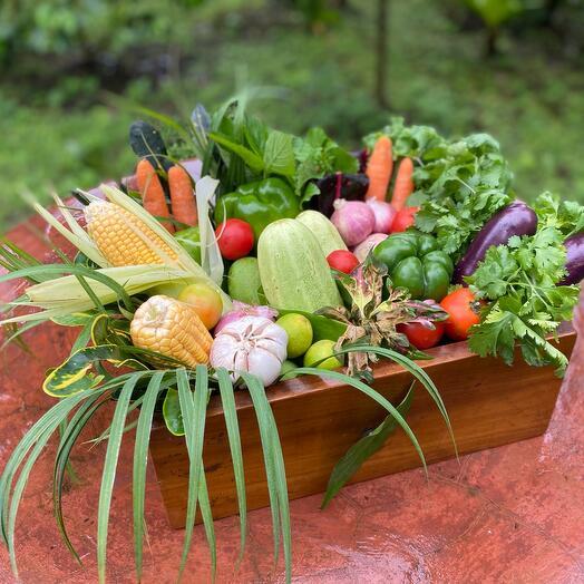 Корзина «овощное безумие»