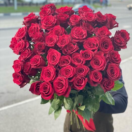 51 Роза Эксплорер 80 см