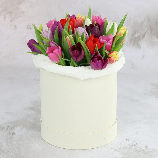 25 разноцветных тюльпанов в шляпной коробке