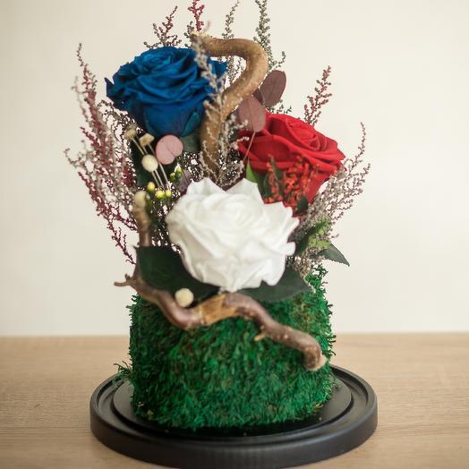 Композиция триколор: букеты цветов на заказ Flowwow