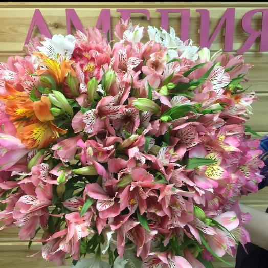 Гармоничный🌺: букеты цветов на заказ Flowwow