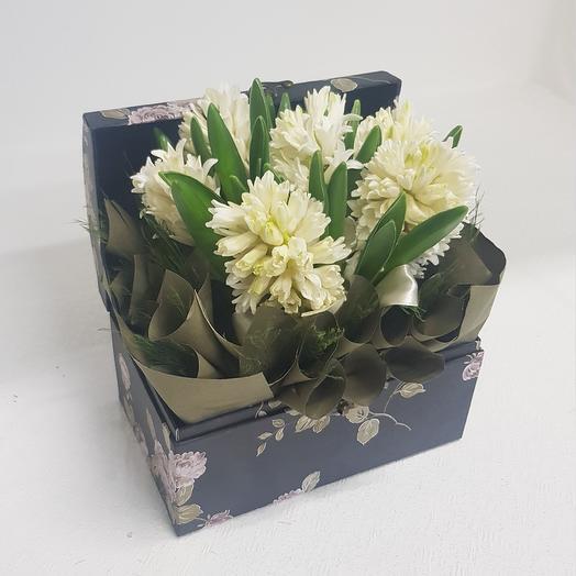 Композиция из 7 белых гиацинтов: букеты цветов на заказ Flowwow