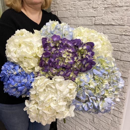 Шикарная гортензия по супер цене: букеты цветов на заказ Flowwow