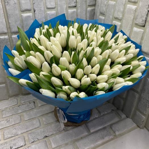 151 белые тюльпаны