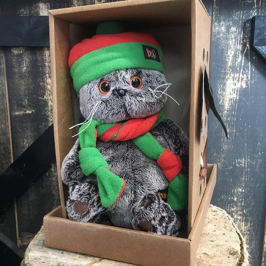 Кот Басик в шарфике с шапкой