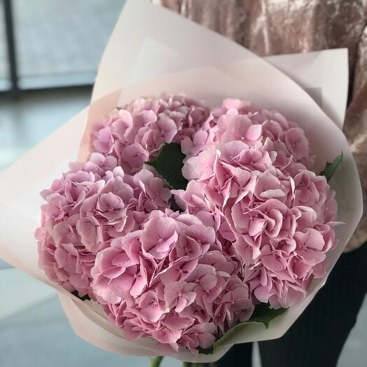 Букет из розовых гортензий «медиум»