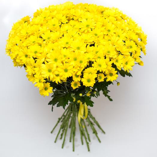 Букет из 27 желтых хризантем: букеты цветов на заказ Flowwow