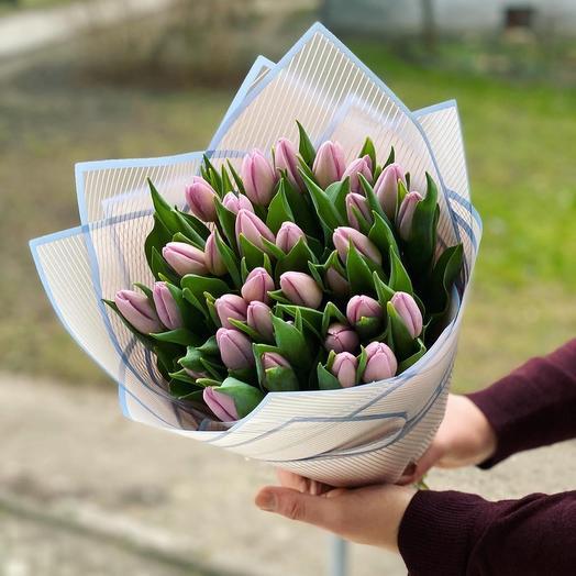 29 Purple Tulips