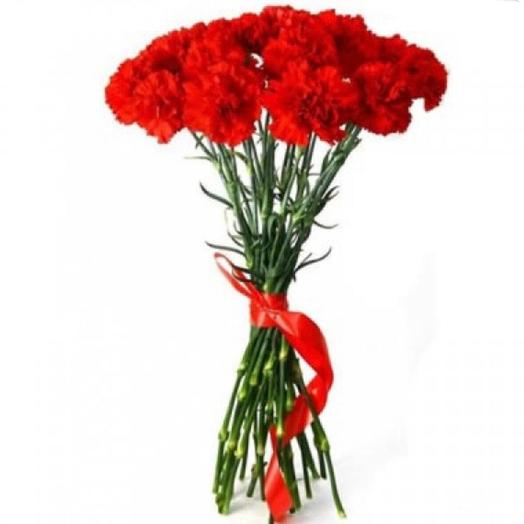 The red and green carnation