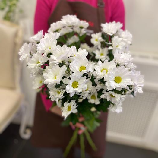 Хризантемы -Ромашки