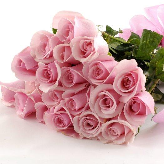 Магнолия: букеты цветов на заказ Flowwow