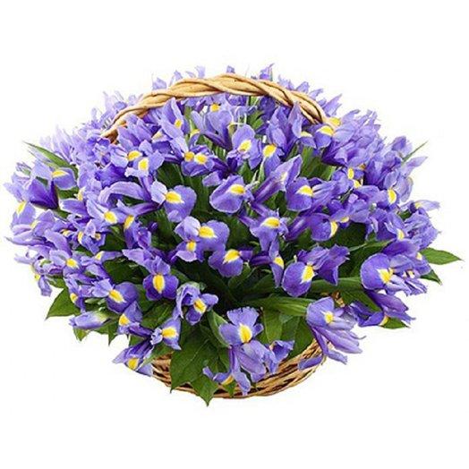 Ирисовая корзина: букеты цветов на заказ Flowwow
