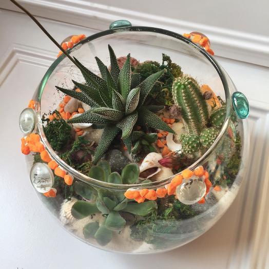 Флорариум «оранжевое чудо»: букеты цветов на заказ Flowwow