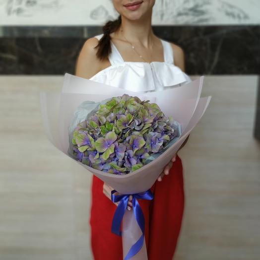 Букет из гортензии: букеты цветов на заказ Flowwow