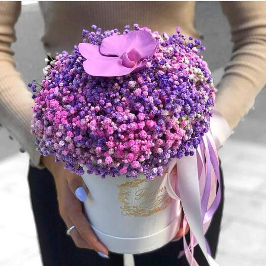 Цветы в коробке «Мечтатели»