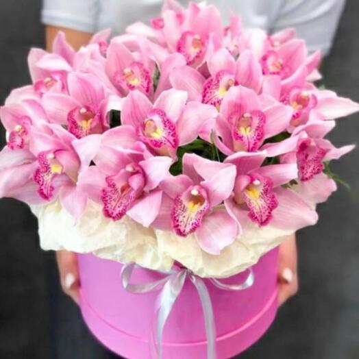 25 орхидей в коробке
