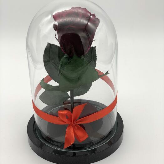 Роза в Стеклянно Колбе Красная Мини