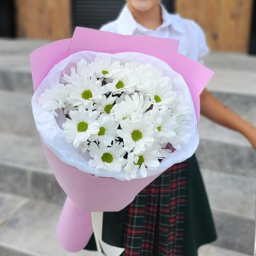 Моно из ромашковой хризантемы